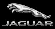 Jaguar-500x270-1.png